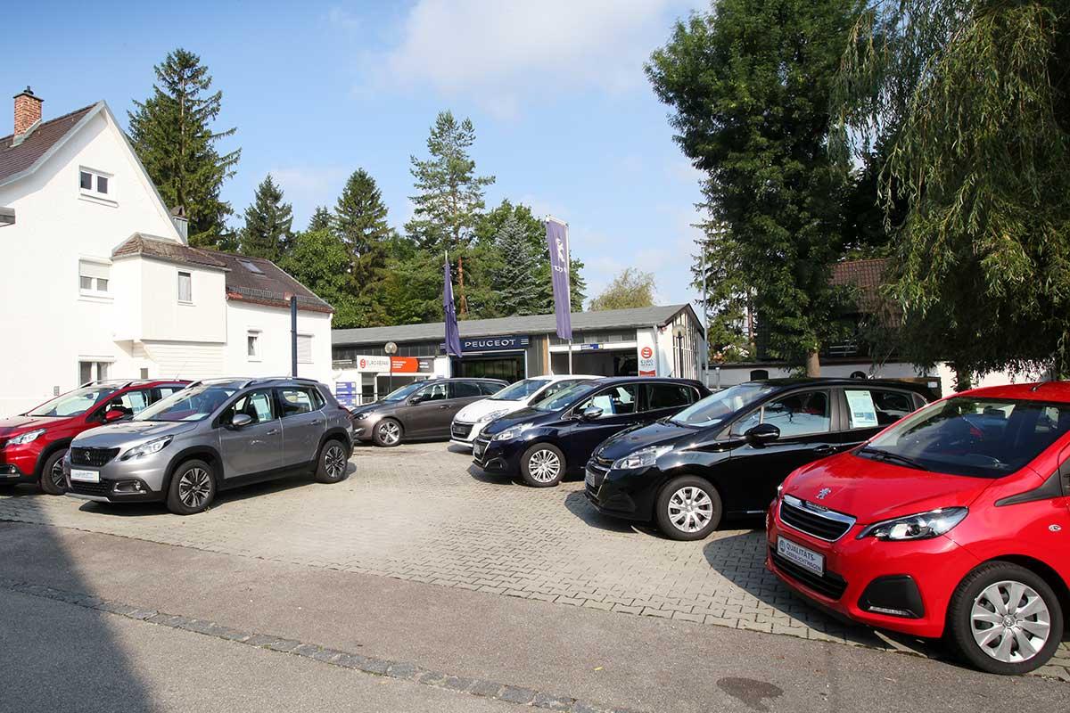 Das Team vom Peugeot Autohaus Eiselt in Eichenau