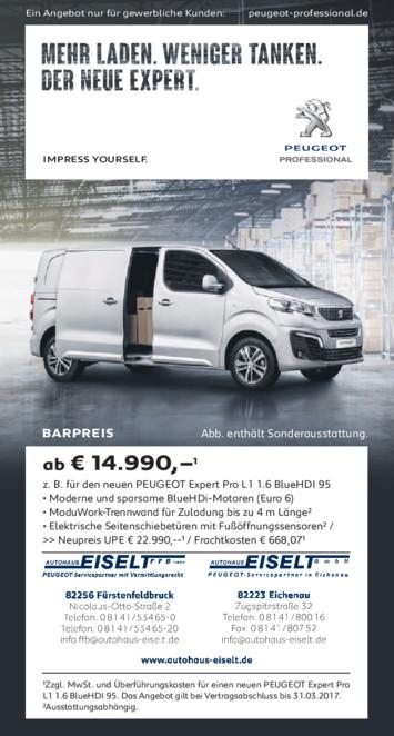 Barpreis Angebot Peugeot Expert Kastenwagen aus der Print Werbung Autohaus Eiselt